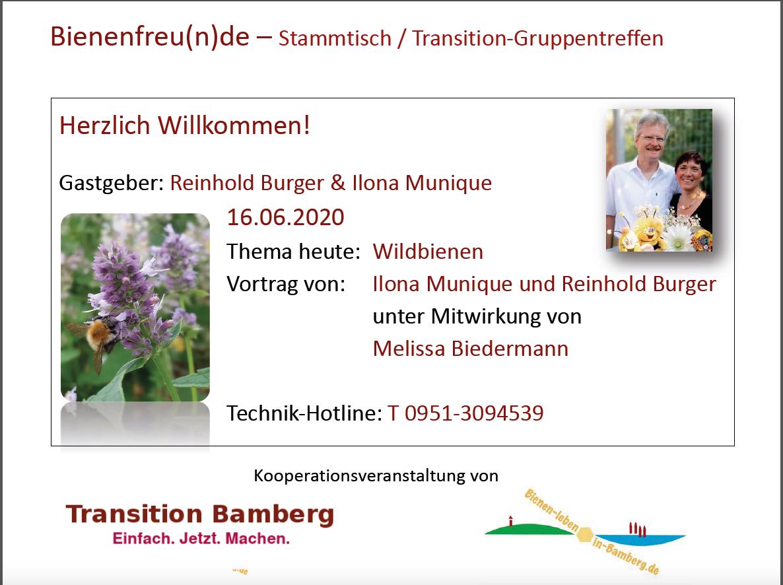 Folie zur Vortragspräsenation Wildbiene / Munique