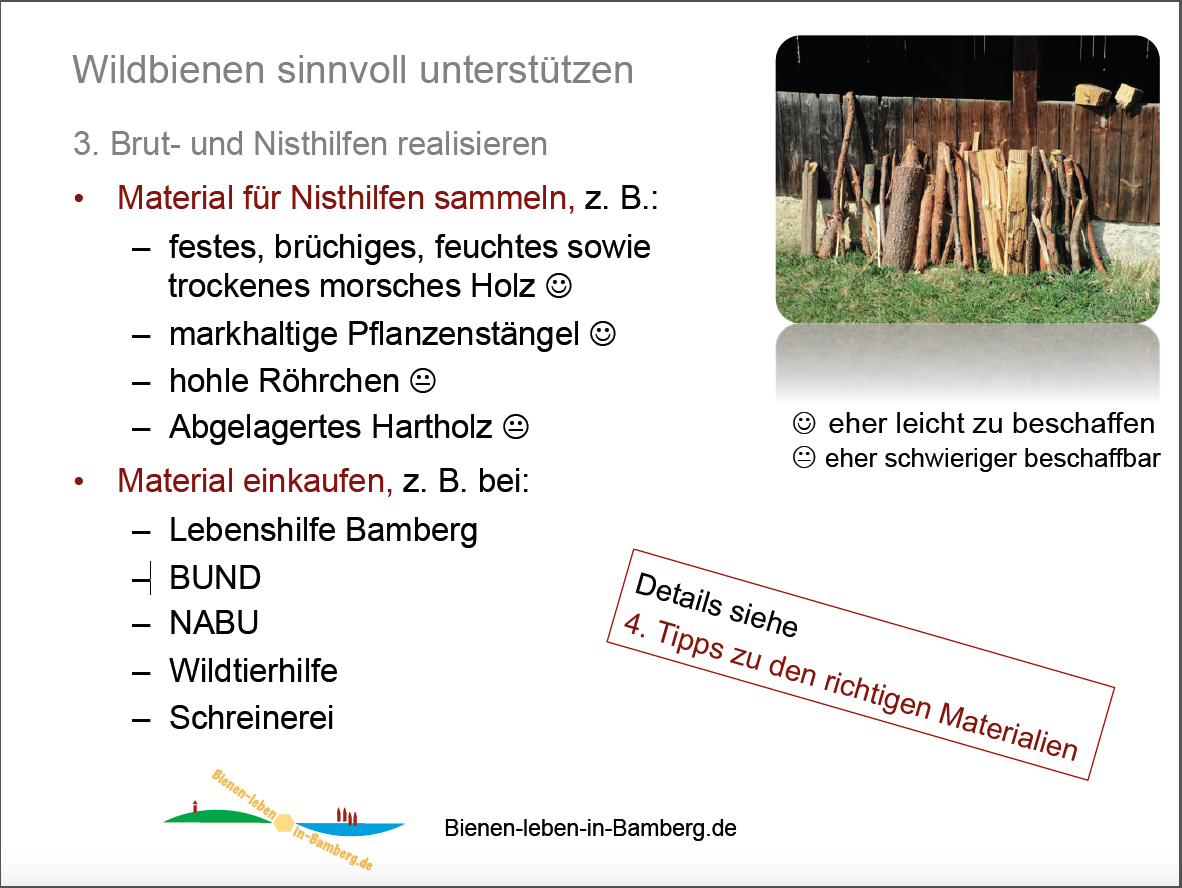 Folie zur Vortragspräsenation Wildbiene / Munique