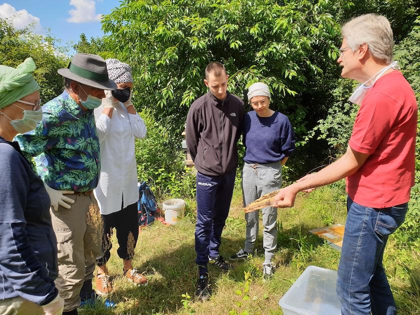 Reinhold zeigt Honigwabe mit ansitzenden Bienen