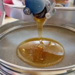 Honigverarbeitung der Sternwart-Ernte 2020