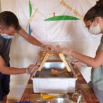 Honigverarbeitung Buger Wiesen 2020