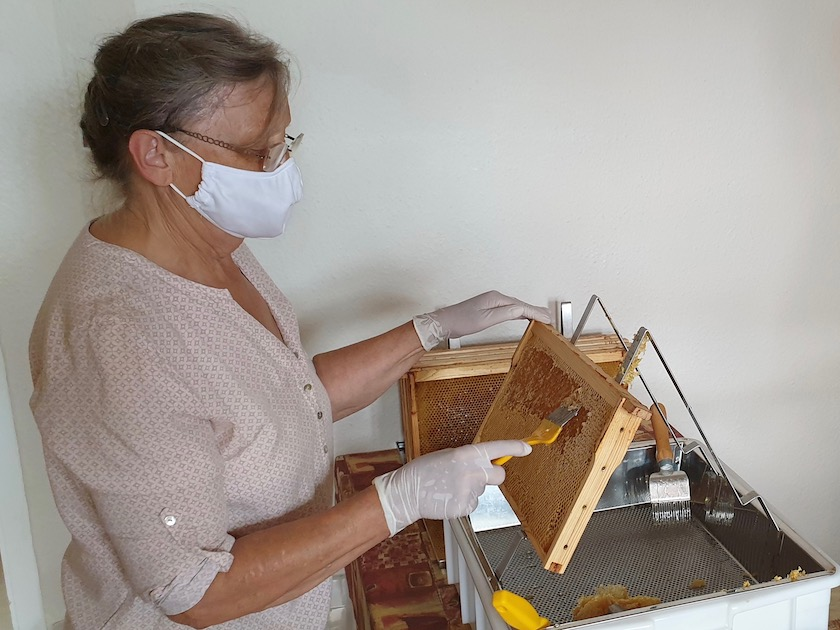 Honigverarbeitung vom Bienenweg