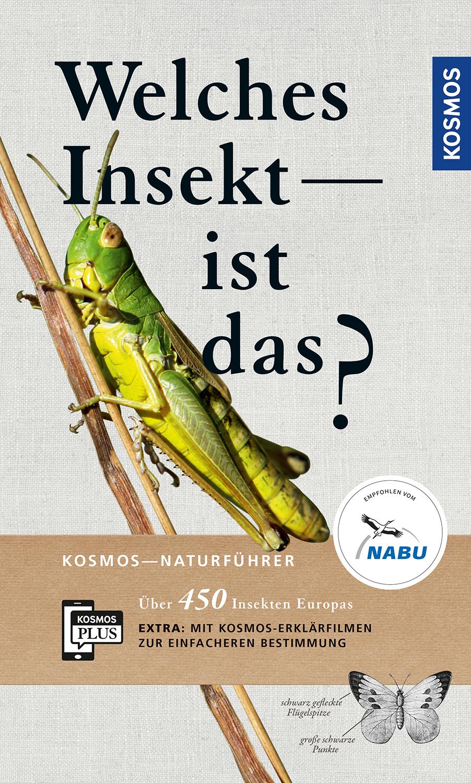 Cover zu Bellmann: Welches Insekt ist das? Kosmos