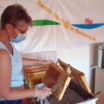 Honigverarbeitung des Bamberger Lagenhonigs der Lage Schiffbauplatz 2020