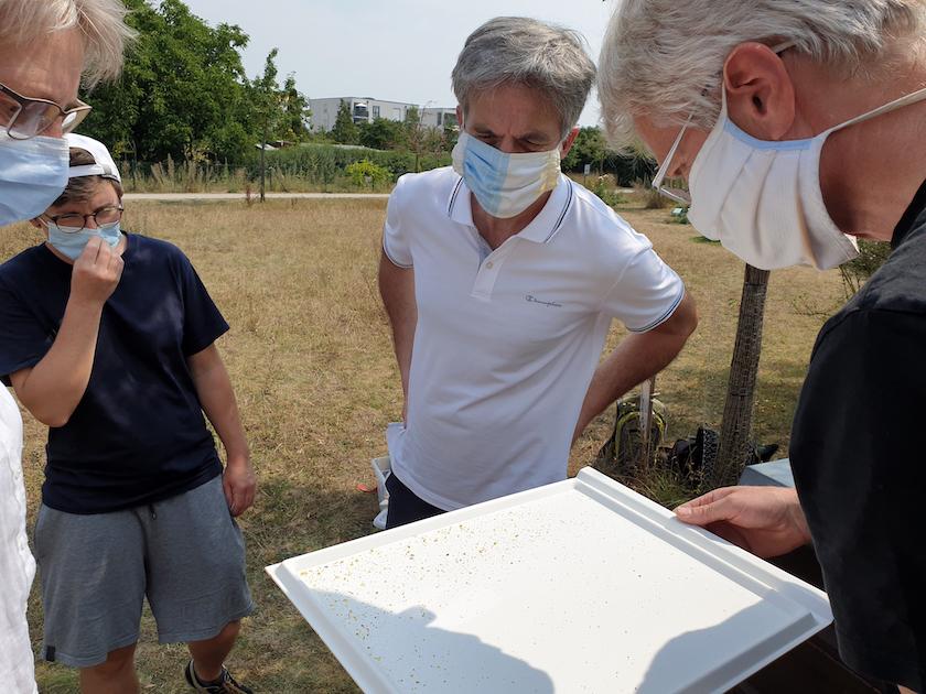 Am Lehrbienenstand Bienenweg, Modul 9 Wabenhygiene und Varroabehandlung