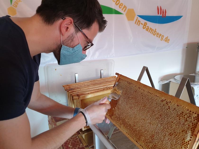 Honigverarbeitung der Villa-Dessauer-Ernte 2020