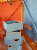 Farbige Wände und Regale für neue Innenraumgestaltung der Bienen-InfoWabe