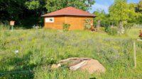 Wildbienen- und Insektenreservat an der Blühwiese