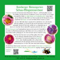 Infotafel Schau-Pfingsrosenbeet im Bamberger Bienengarten