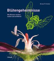 Cover Kremer, Blütengeheimnisse, Haupt