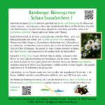 Infotafel zum Schau-Staudenbeet 1 des Bamberger Bienengartens, Bienenweg 1