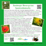 Infotafel Spontanbewuchs im Bamberger Bienengarten
