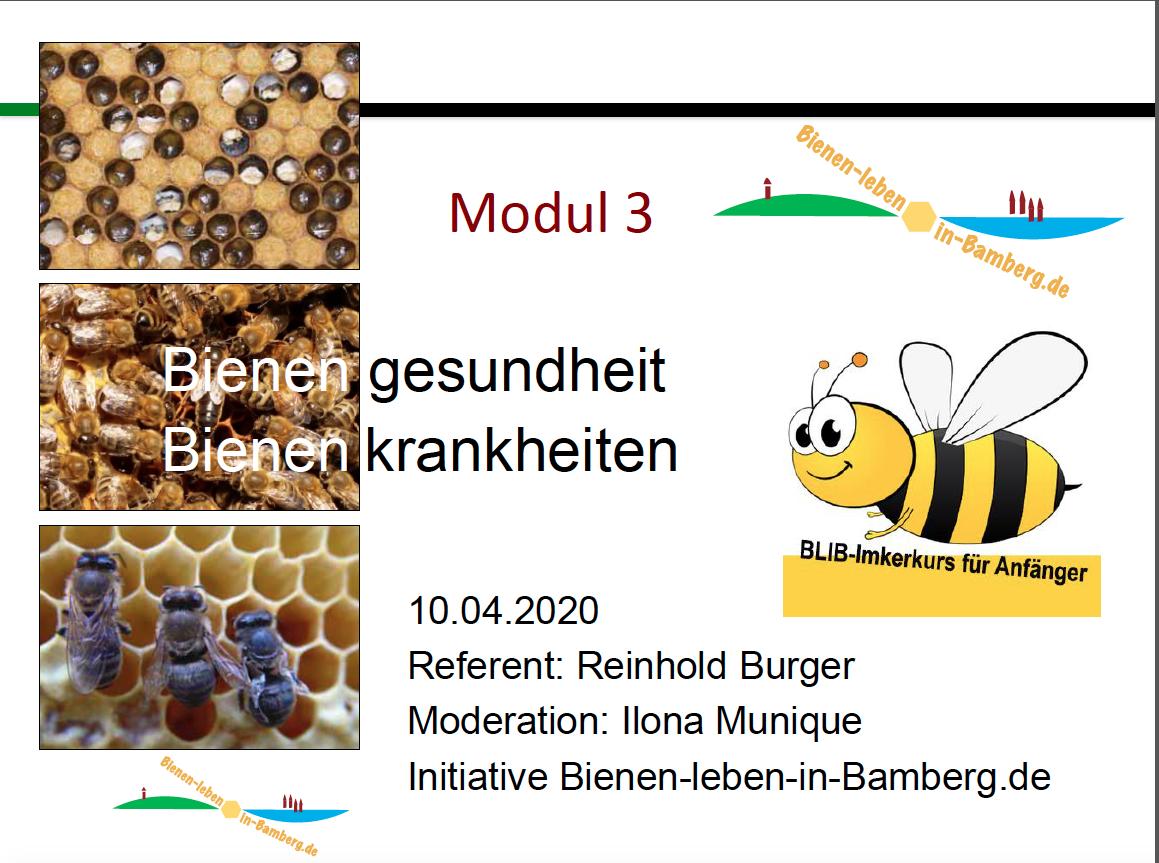 Folie Imkerkurs Bienenkrankheiten (BLIB-AK21)